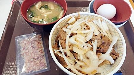 すき家「和風オニサラ牛丼」2019年3月27日実物(みそ汁たまごセット)